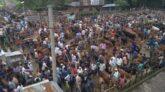 ক্রেতা সংকটেে ধুকছে জুড়ীর কামিনীগন্জ পশুবাজার