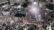 হাটহাজারীতে সমাহিত হবেন আল্লামা শফী