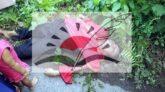 বানিয়াচংয়ে রাস্তার পাশে প্রেমিকার লাশ, প্রেমিক আটক